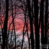 Sunset Sunday, A Warming Winter Sunset from the Pocono Mountains