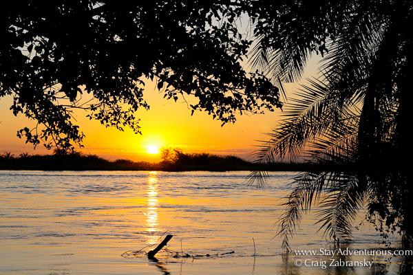 the chobe river in Botswana at sunset