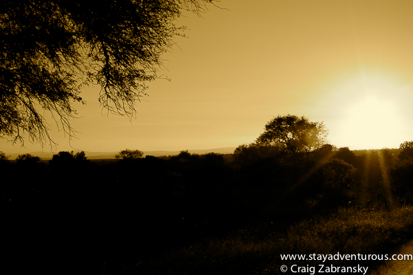 sunset at Kruger National Park in South Africa