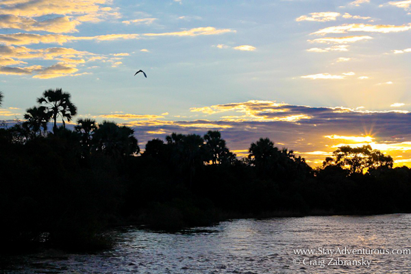 sunset on the mighty Zambezi River between Zimbabwe and Zambia.