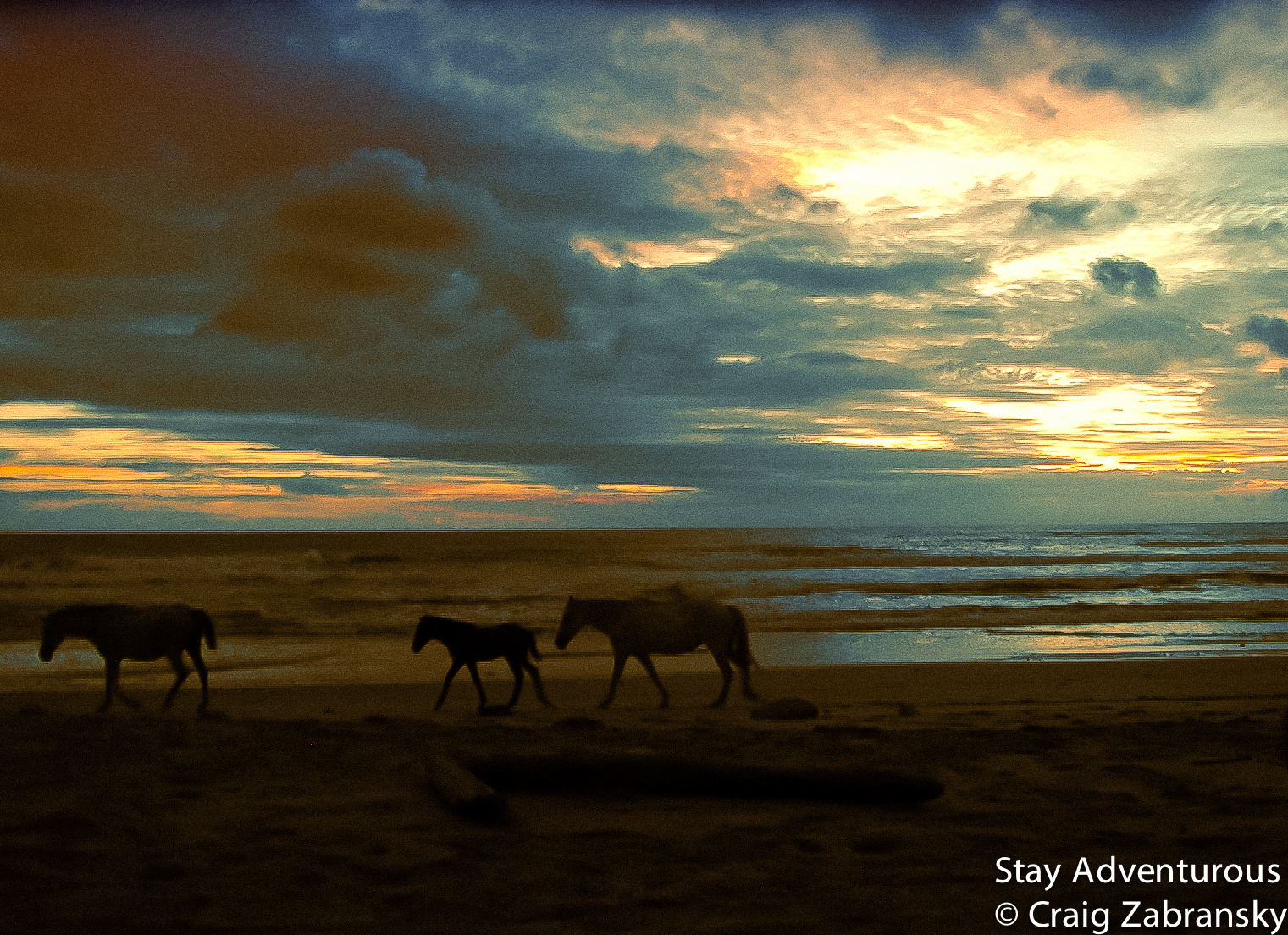 sunset with horses in Santa Teresa - Mal Pais, Costa Rica