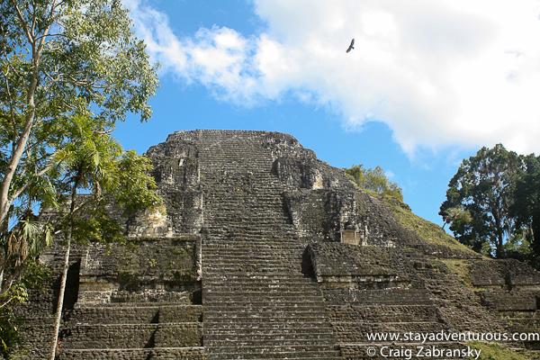 a temple in Tikal, Guatemala