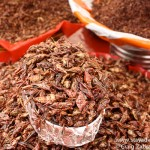 Chapulines, Mexican Crickets are very common in Oaxaca
