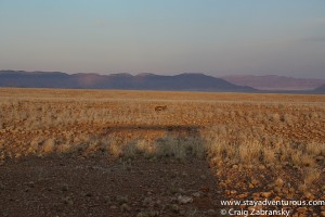 a sunset adventure tour in Sossusvlei Namibia