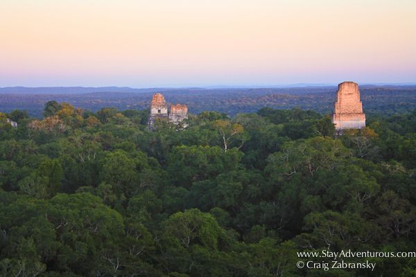 sunset view of the jungles of tikal in guatemala