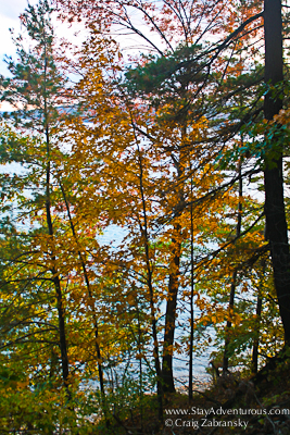 fall foliage in the catskills, new york