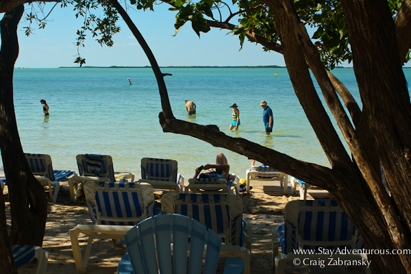 the beach at the hilton key largo resort in the florida keys