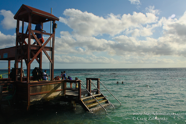 the snorkel platform on De Palm Island, Aruba