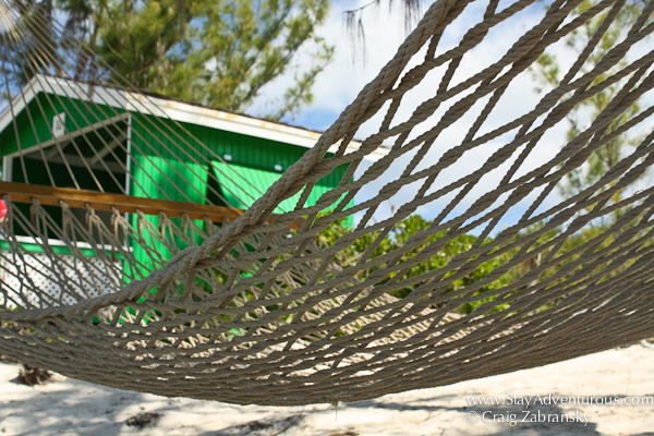a hammock on half moon cay