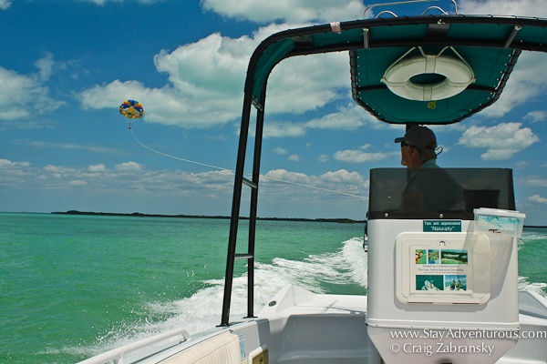 parasailing in the upper florida keys at caribbean watersports, key largo hilton