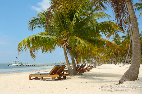 the beach at the Moorings in Islamorada, Florida Keys