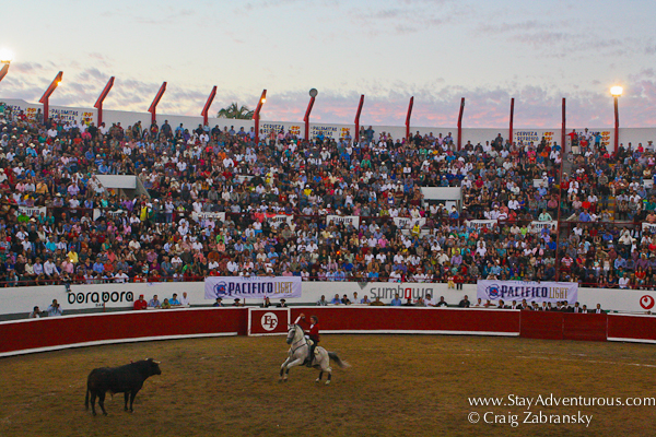 Pablo Hermoso de Mendoza, the world's best rejoneador, fighting a bull in the plaza de toros, mazatlan, mexico during carnaval