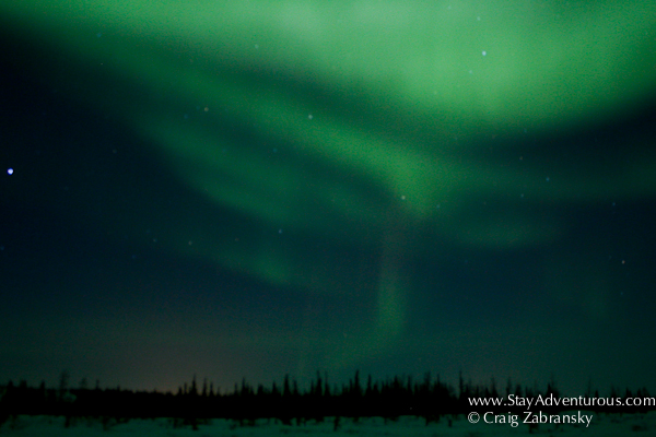Northern Lights, the Auora Borealis outside of Churchill, Manitoba, Canada with Frontiers North
