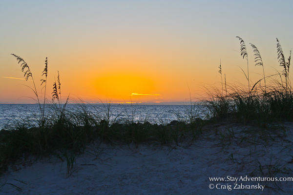 sunset image and the sand dunes from clearwater, florida, usa. best florida beach