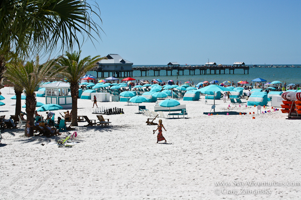 view of clearwater beach in florida from the hilton hotel