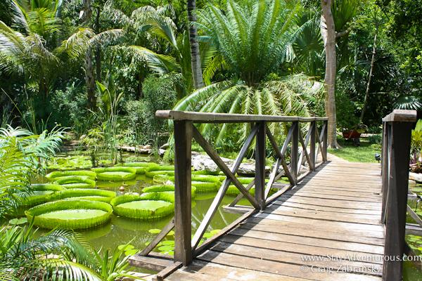 Hacienda Xcanatun in Merida, Yucatan and its Gardens