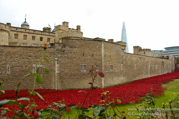 The Blood Swept Land and Seas of Red Ceramic Poppies Tower of London Art Tribute to Fallen of World War I in London, UK