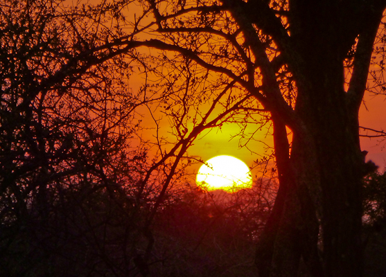 sunset outside the Massai Village and on a trek to the Massai Simba Camp in Kenya, East Africa