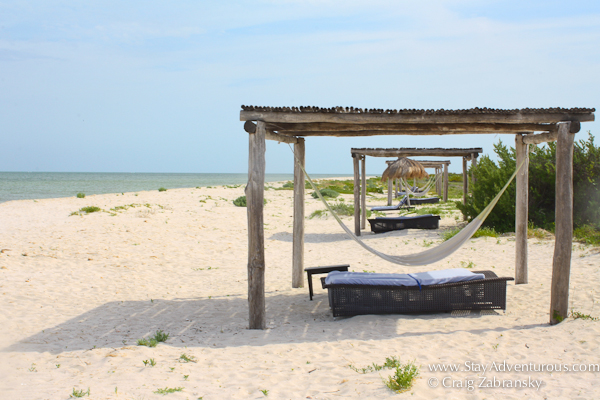 on the virgin beach along the gulf of Mexico at hotel xixim in celestun, yucatan, mexico