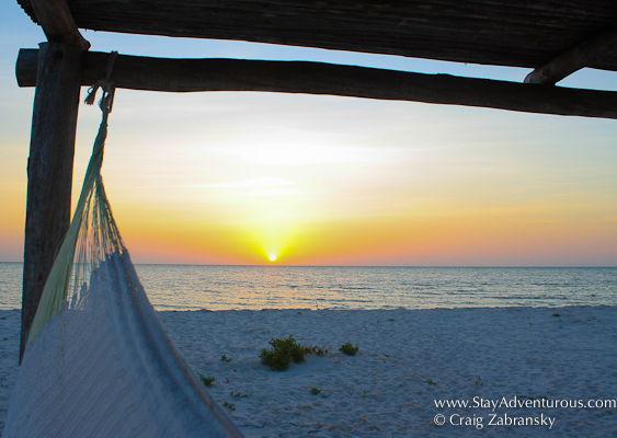 hammock on the virgin beach along the gulf of Mexico at hotel xixim in celestun, yucatan, mexico