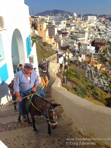Donkeys making the climb in Fira, Santorini