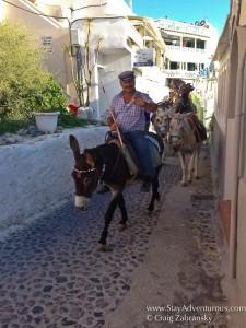 Donkeys take a stroll on the streets of Fira, Santorini
