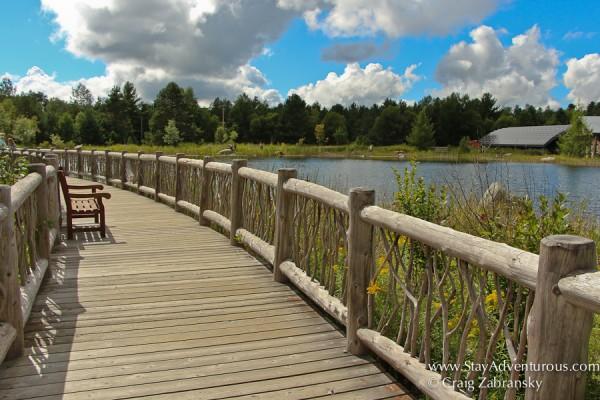 the bridge at the wild center in the Adirondacks of New York