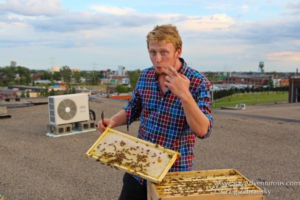 Declan, Montreal Beekeeper