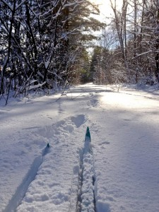 Cross Country Ski in Lake Placid, NY, part of the perfect snow day in the Adirondacks