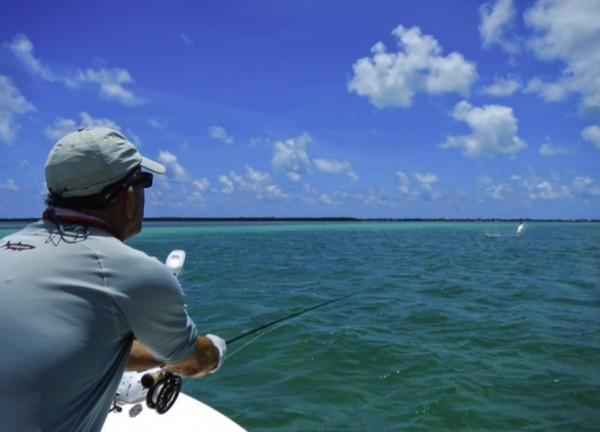 fly flishing in islamorada, florida keys with Captain Harp Heffernan Allie Cat Fishing Charters