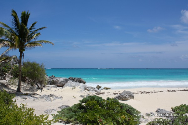 beach reserved as a Turtle Nesting Ground at the Mayan Ruins of Tulum