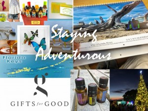 Gifts from the 2017 Holiday Gift Guide on Staying Adventurous