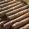Postcard – Hand Rolled Cigars in Catemaco, Veracruz
