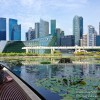 Episode 08: The Sensations of Singapore, a City for the Senses