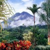4 Natural Wonders in Costa Rica You Need To Experience