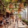 9 of the Best Restaurants in Toronto