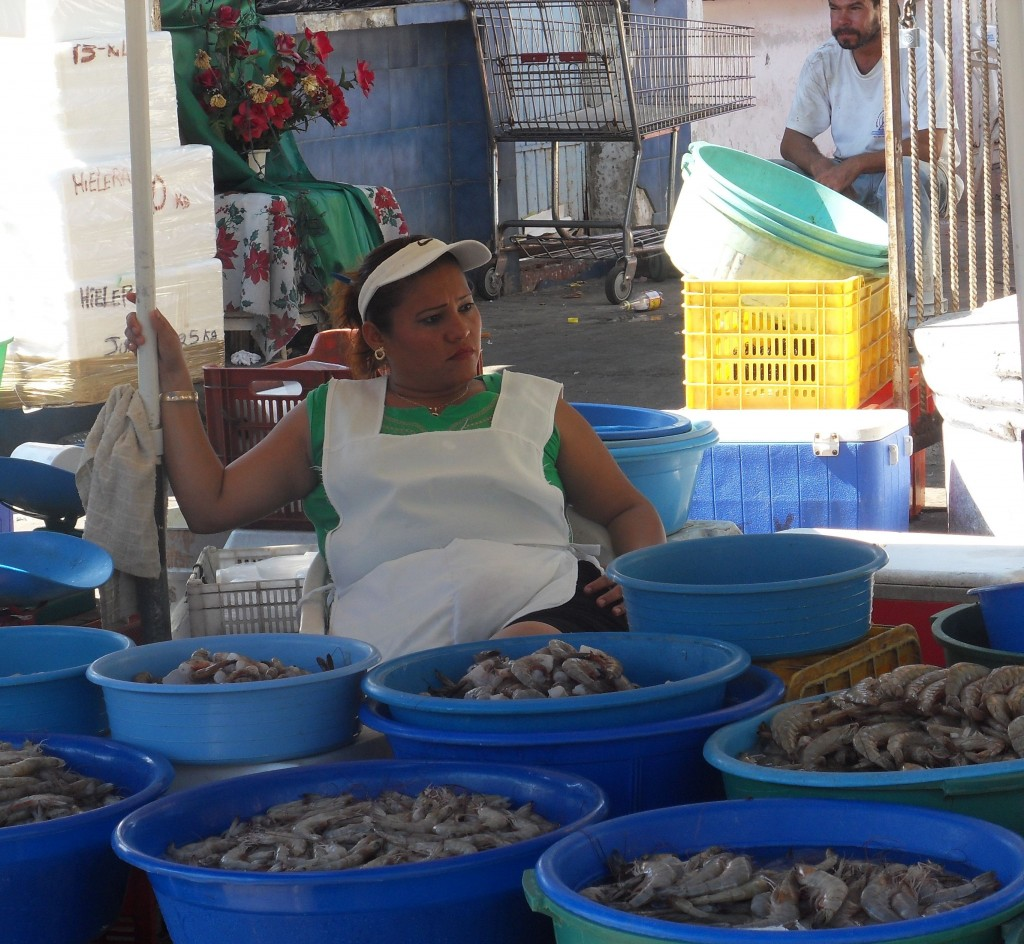 shrimp market in mazatlan mexico