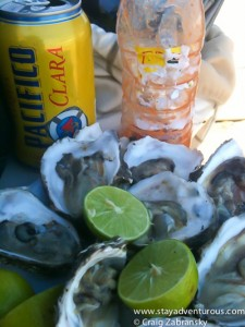 Oysters are delicious.