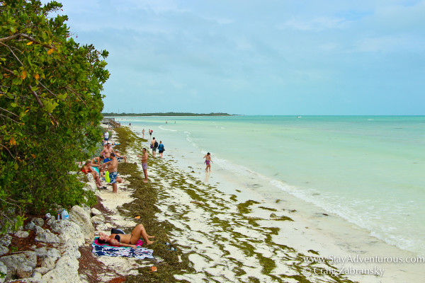 the beach on th eoceanside, the atlantic inside Bahia Honda, Florida Keys