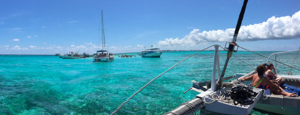 arriving to stingray city on a catamaran in Grand Cayman