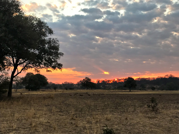 the Sunset in South Luangwa National Park in Zambia for Sunset Sunday