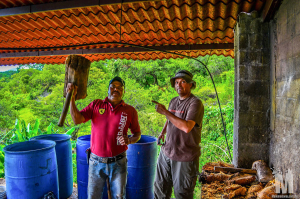 Smashing the roasted pina when making the Mezcal in Malinalco, Mexico on the Ruta de Zapote