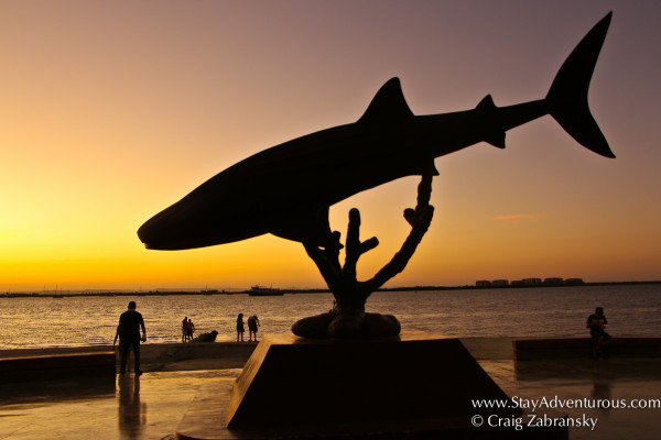 whale shark sculpture on the malecon in la paz, baja california sur, mexico