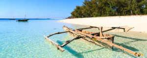 the beaches of zanzibar are some of the most pristine and beautiful in thr world