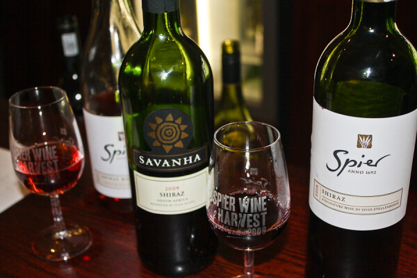 tasting the reds at Spier Vineyards in Stellenbosch, South Africa