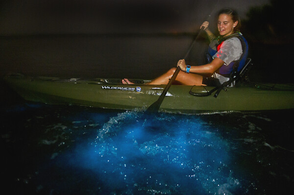 bioluminescence kayak in coastal water space coast florida