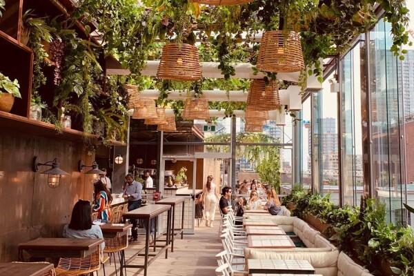 Baro- Restaurant-Toronto-Canada