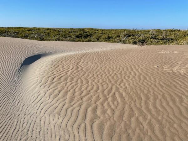 the sand dunes of Magdalena Island from Puerto Adolfo Lopez Mateos Baja California Sur, Mexico