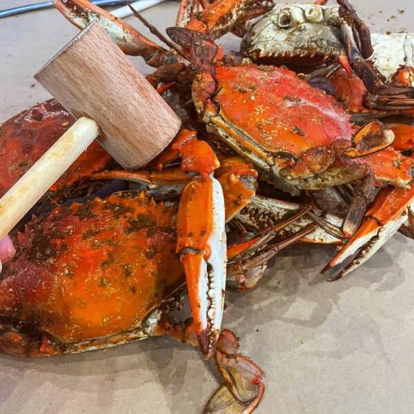 Bag of steamed crabs with Old Bay in Ocean City, Maryland